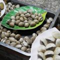 貝料理はライム塩胡椒が定番、付け合せの謎の葉っぱの理由とは
