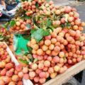 ライチは5~6月初夏が旬!ベトナムに行ったら絶対食べたいフルーツ