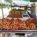 ベトナム雨季の楽しみがやってきた!旬のライチ、マンゴスチンは旨過ぎ!